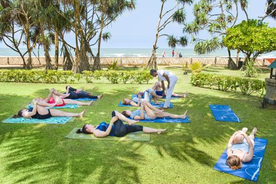 LKCMBROYAP Royal Palms Yoga
