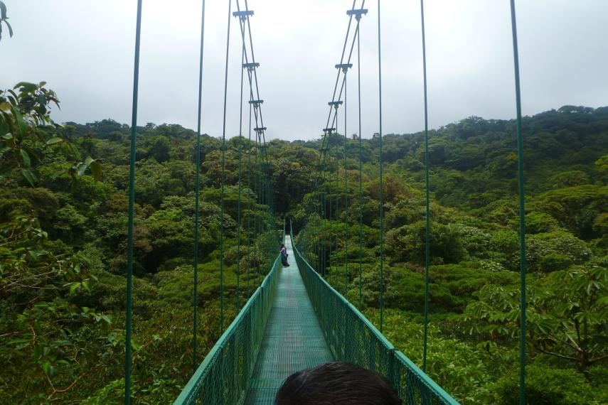 CR Costa RicaHanging Bridge Monteverde