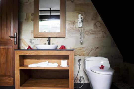 SCSEZLADIG La Digue Island Lodge beach chalet bathroom 001