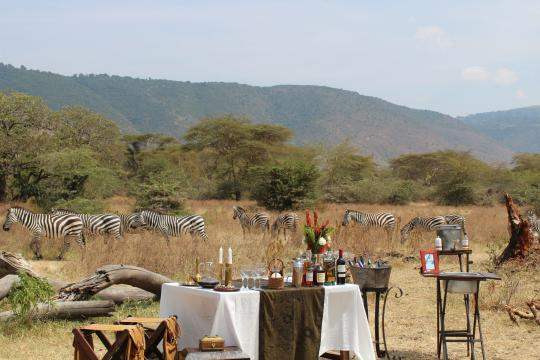 TZ Tansania The Manor - Crater Floor Luncheon 2-Bush Bar 2