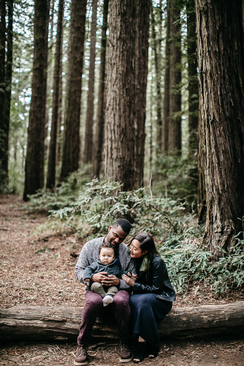 oakland-redwoods-urban-family-session-18