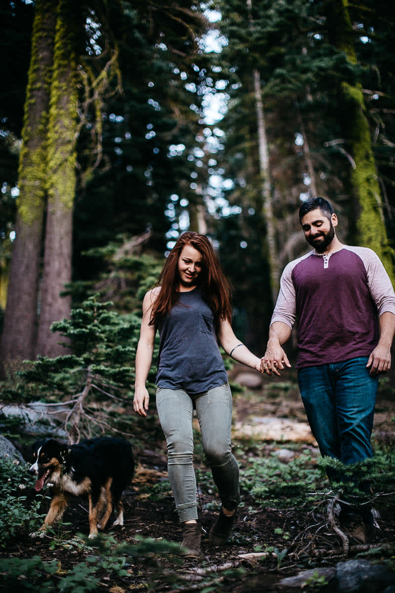 lake-tahoe-forest-donner-sunset-couple-session-10
