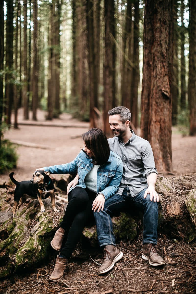oakland-gloomy-redwood-engagement-session-with-puppy-19