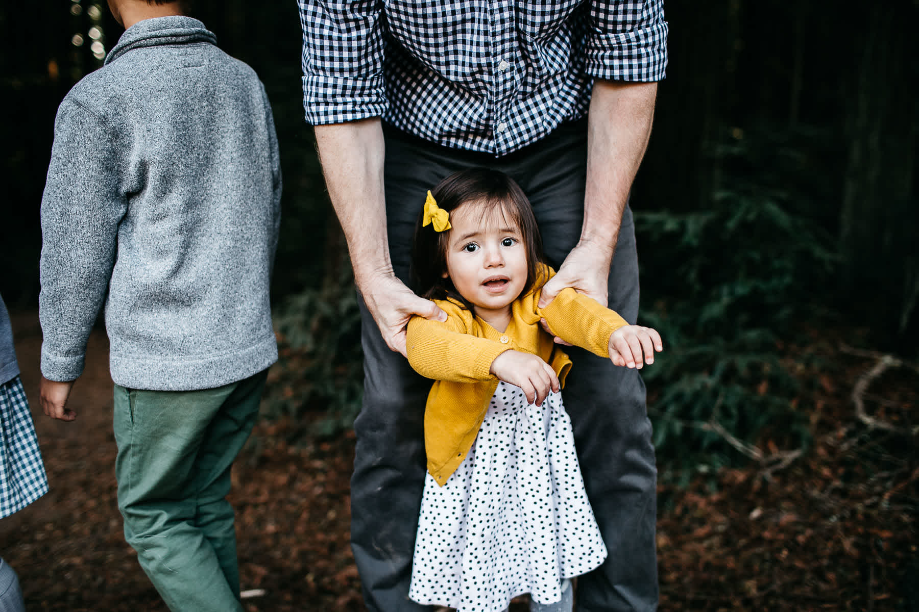 oakland-redwoods-dreamy-big-family-lifestyle-session-3