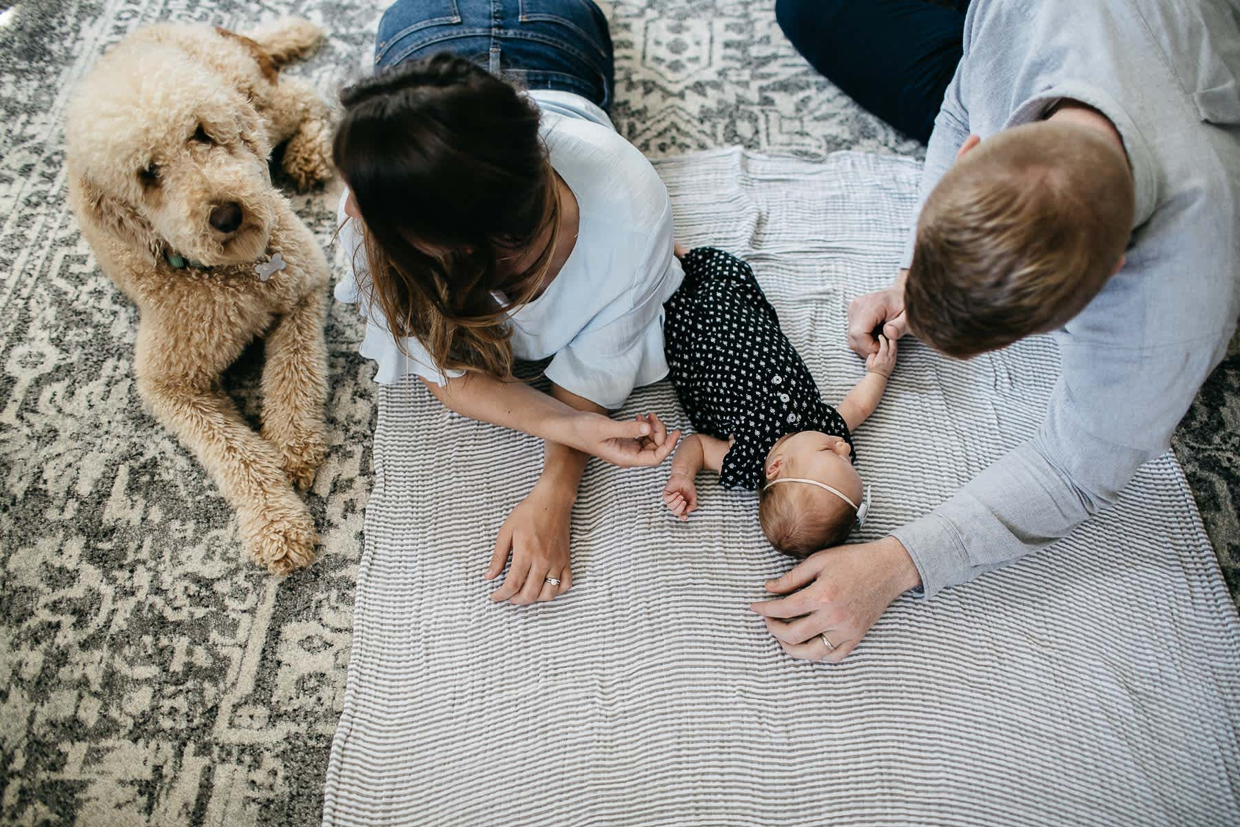 san-francisco-lifestyle-in-home-newborn-with-dog-30