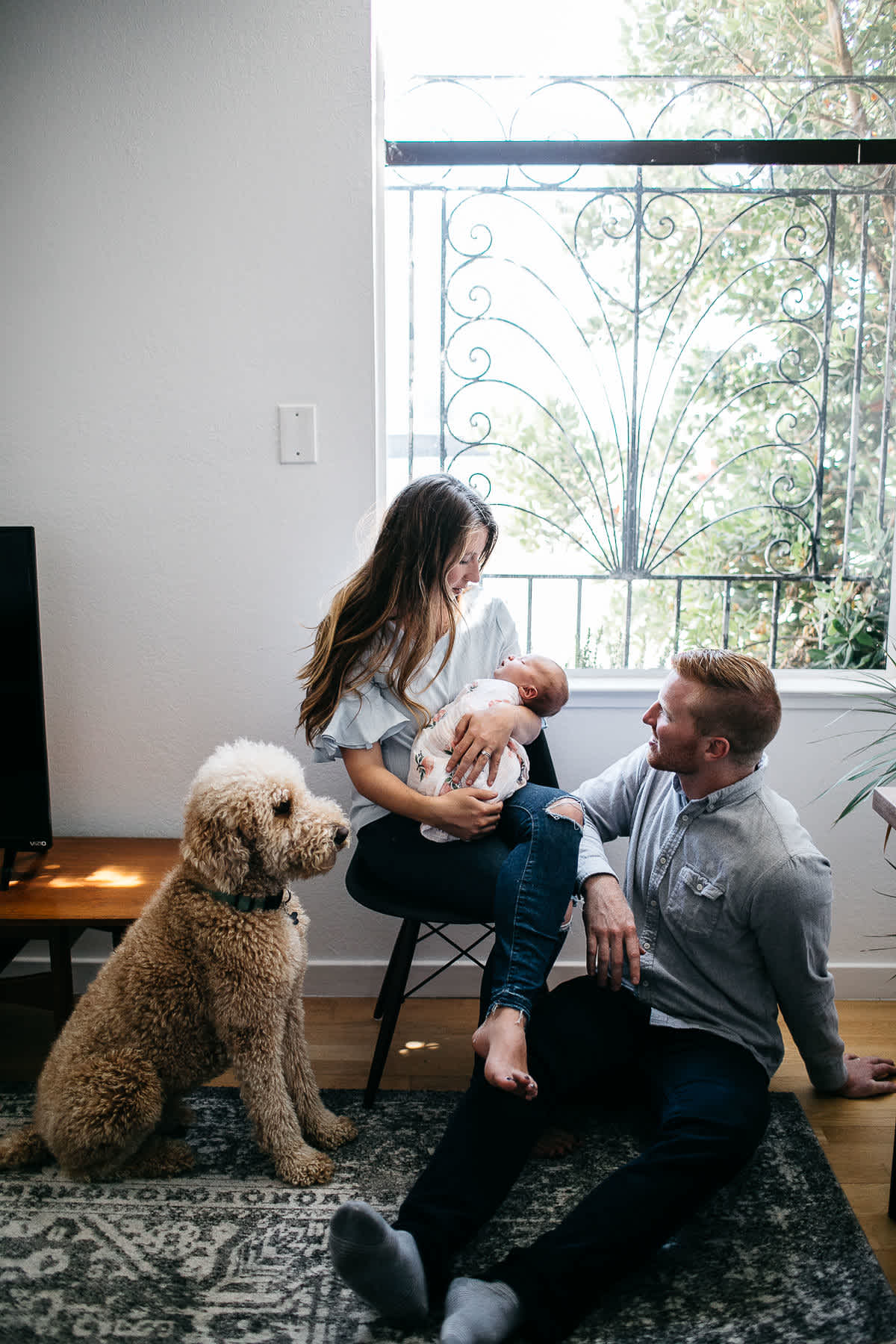 san-francisco-lifestyle-in-home-newborn-with-dog-38