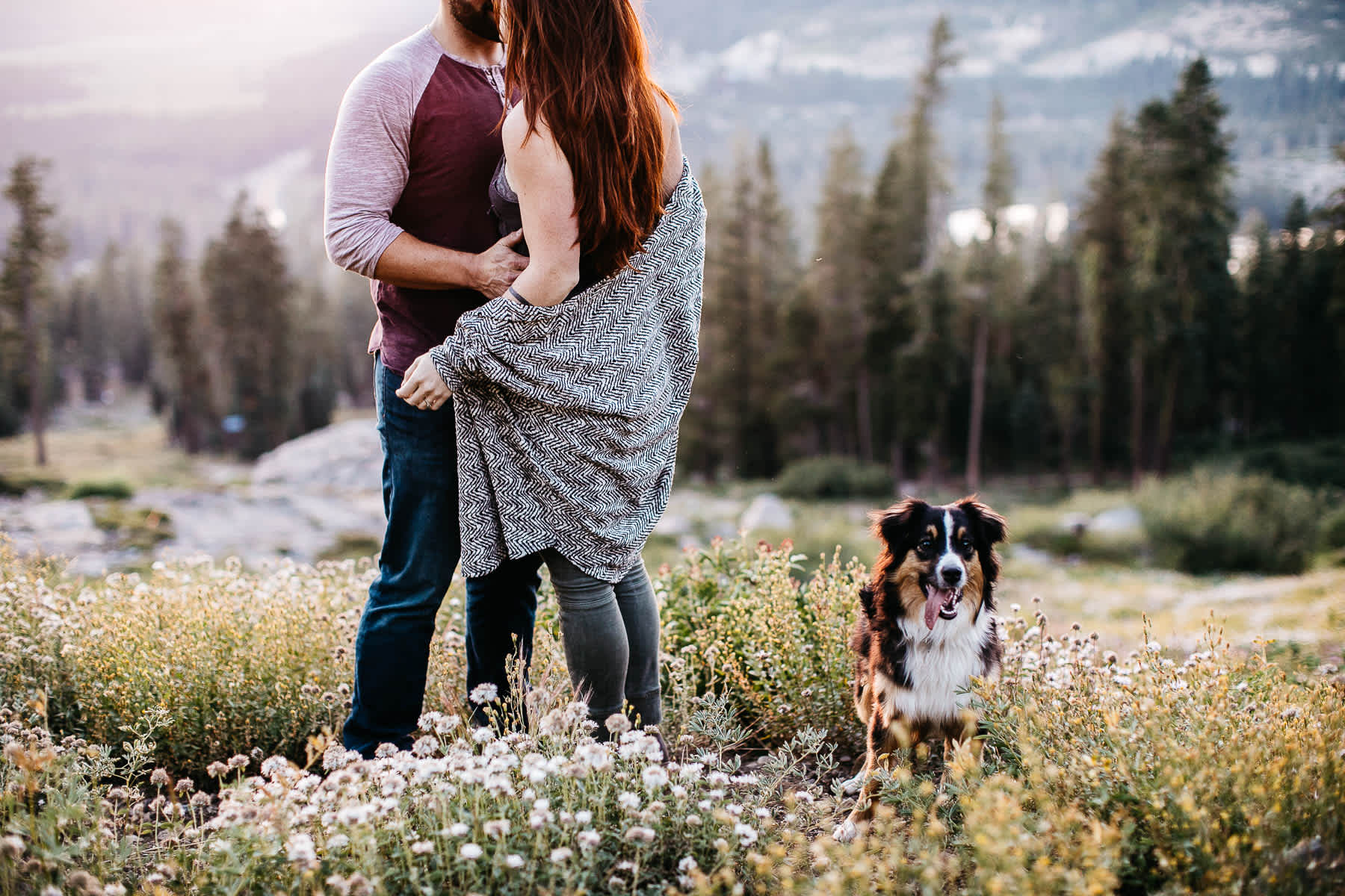 lake-tahoe-forest-donner-sunset-couple-session-13