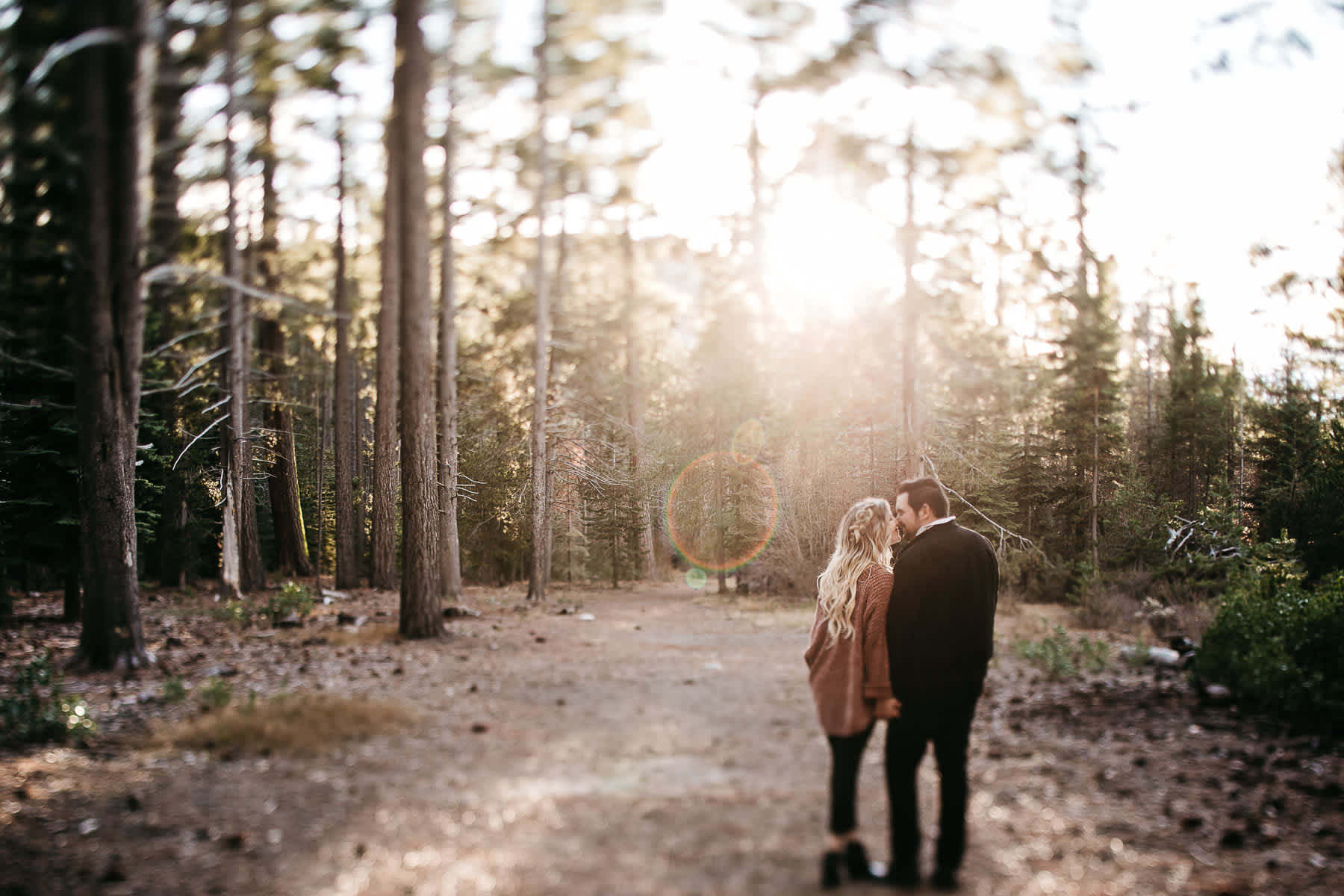 donner-lake-tahoe-national-forest-fall-engagement-session-8