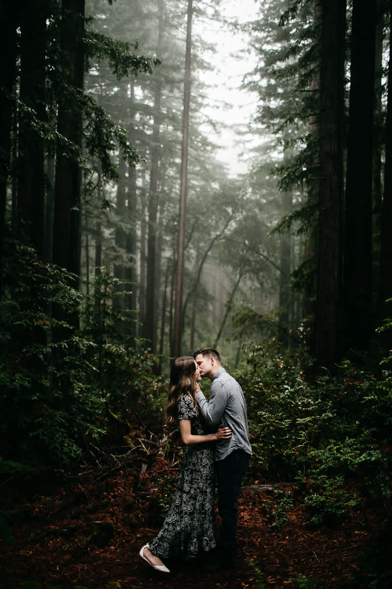 mt-tam-california-foggy-fall-engagement-hills-redwood-engagement-session-16