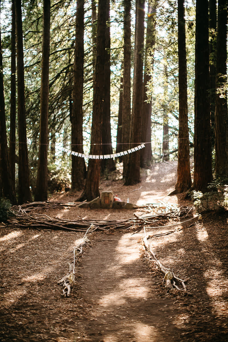 oakland-redwoods-summer-wedding-31
