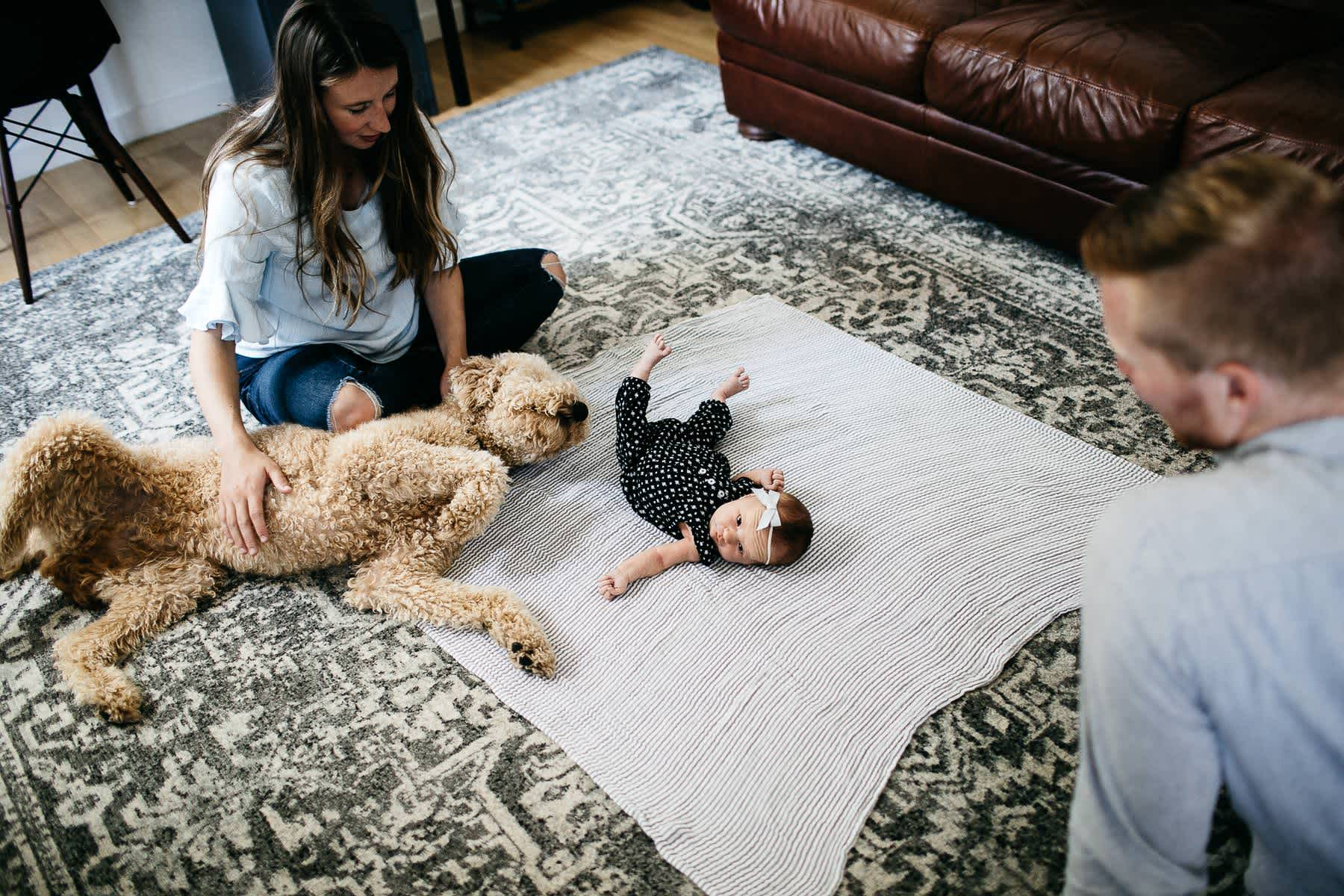 san-francisco-lifestyle-in-home-newborn-with-dog-17