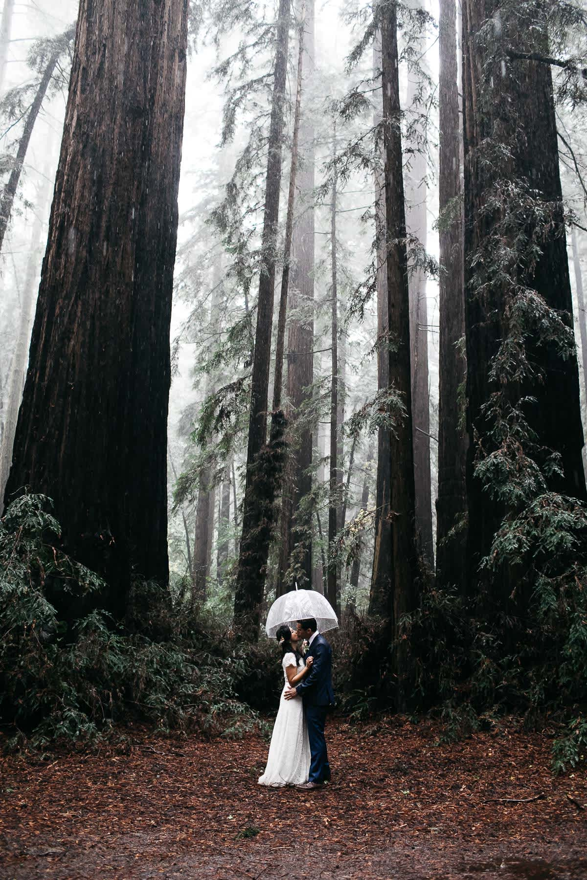 santa-cruz-redwoods-henry-cowell-rainy-elopement-photographer-44