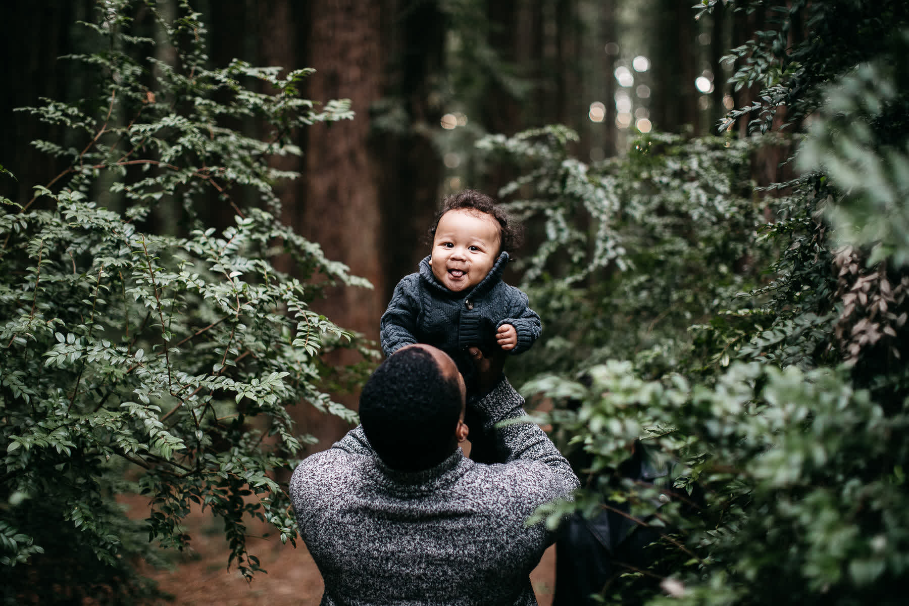 oakland-redwoods-urban-family-session-4