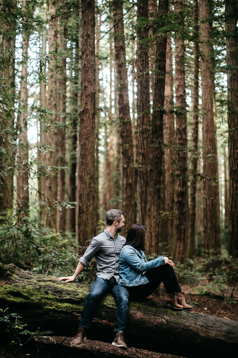 oakland-gloomy-redwood-engagement-session-with-puppy-8