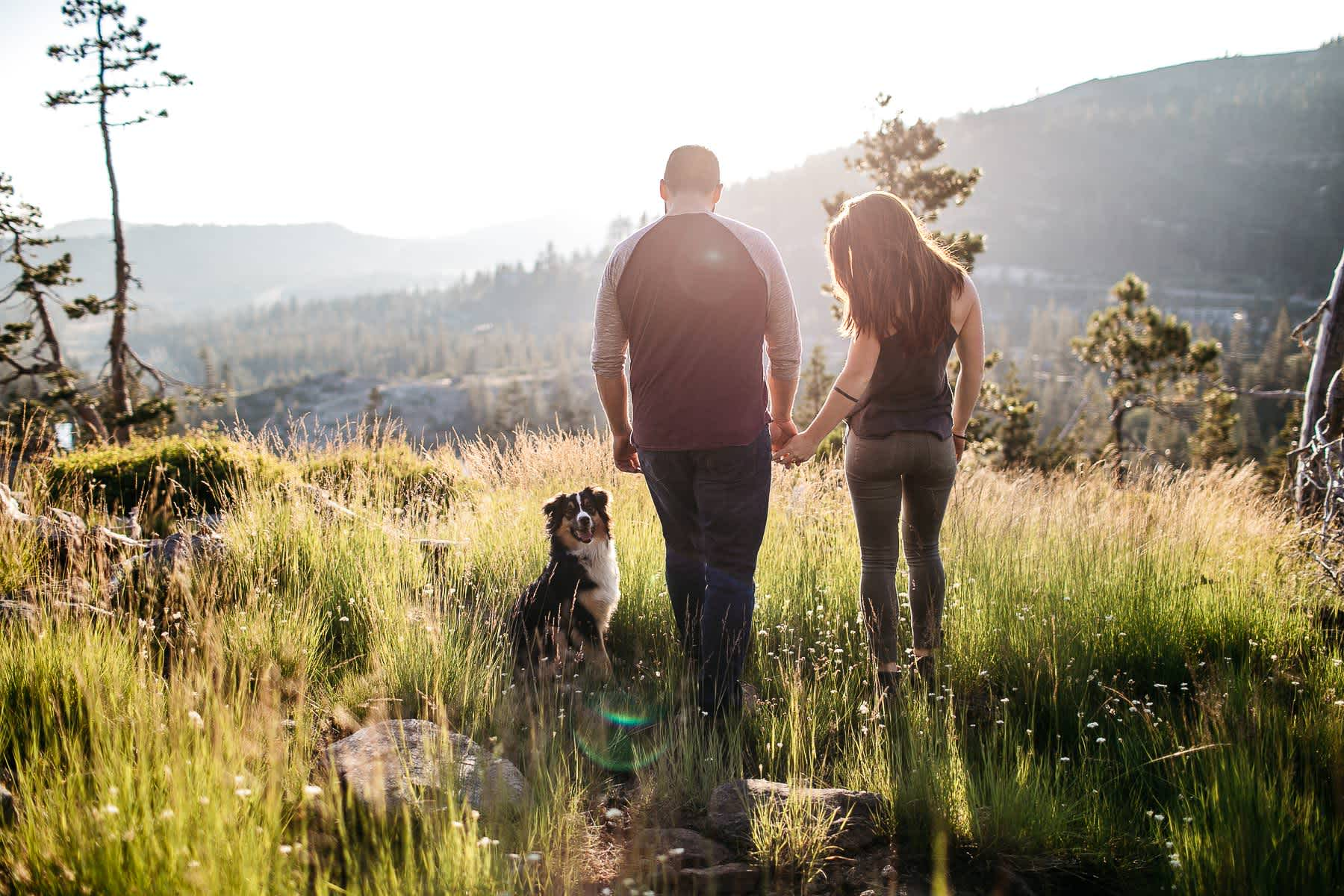 lake-tahoe-forest-donner-sunset-couple-session-4