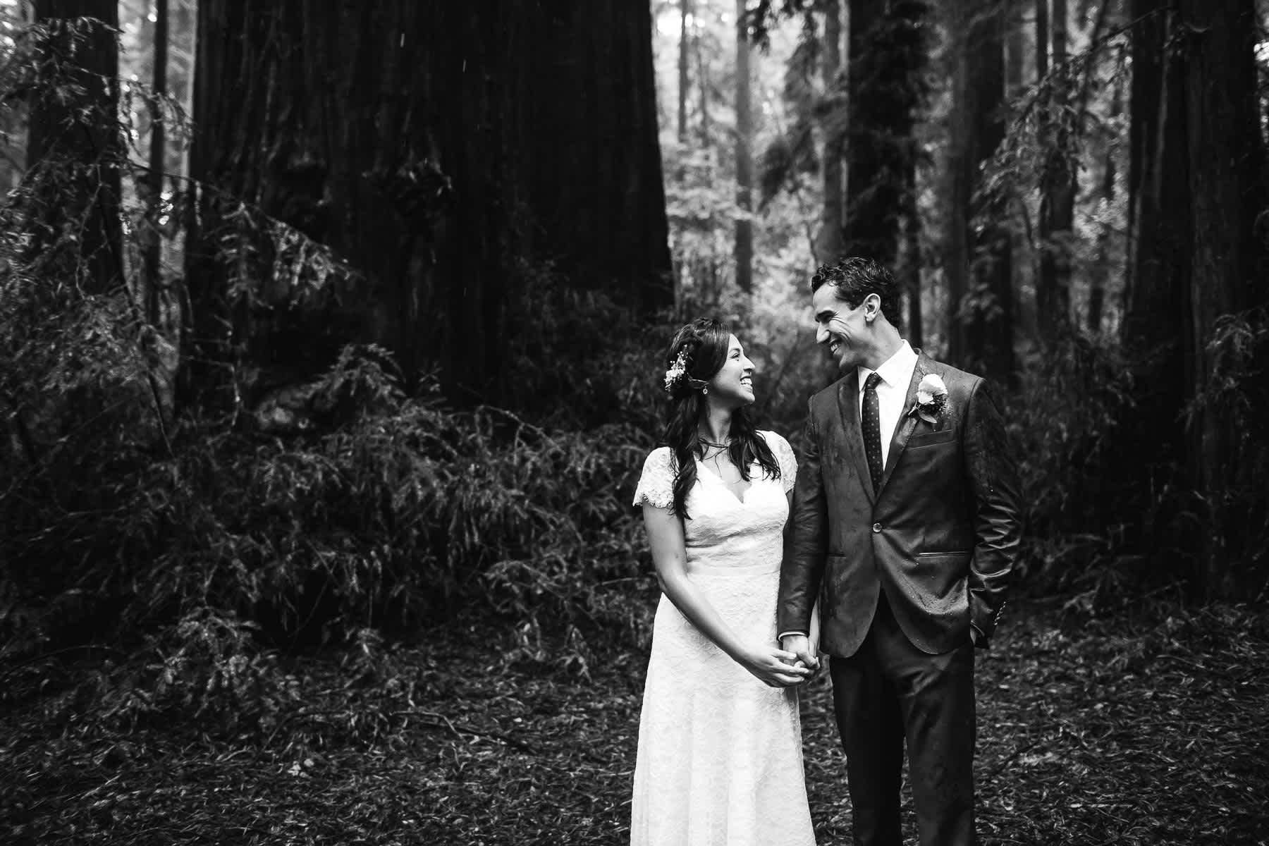 santa-cruz-redwoods-henry-cowell-rainy-elopement-photographer-51