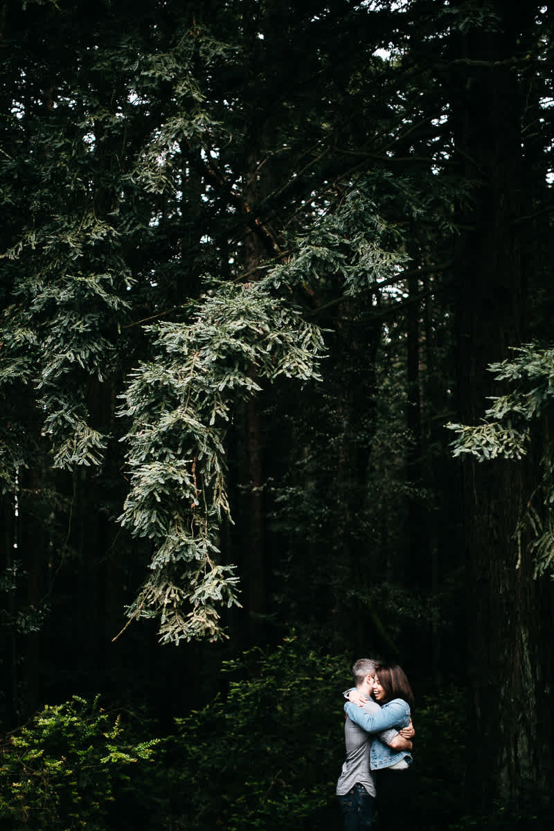 oakland-gloomy-redwood-engagement-session-with-puppy-36