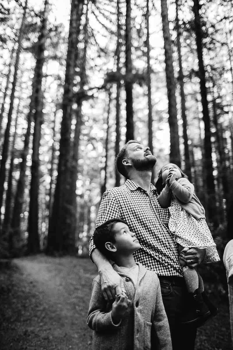 oakland-redwoods-dreamy-big-family-lifestyle-session-20
