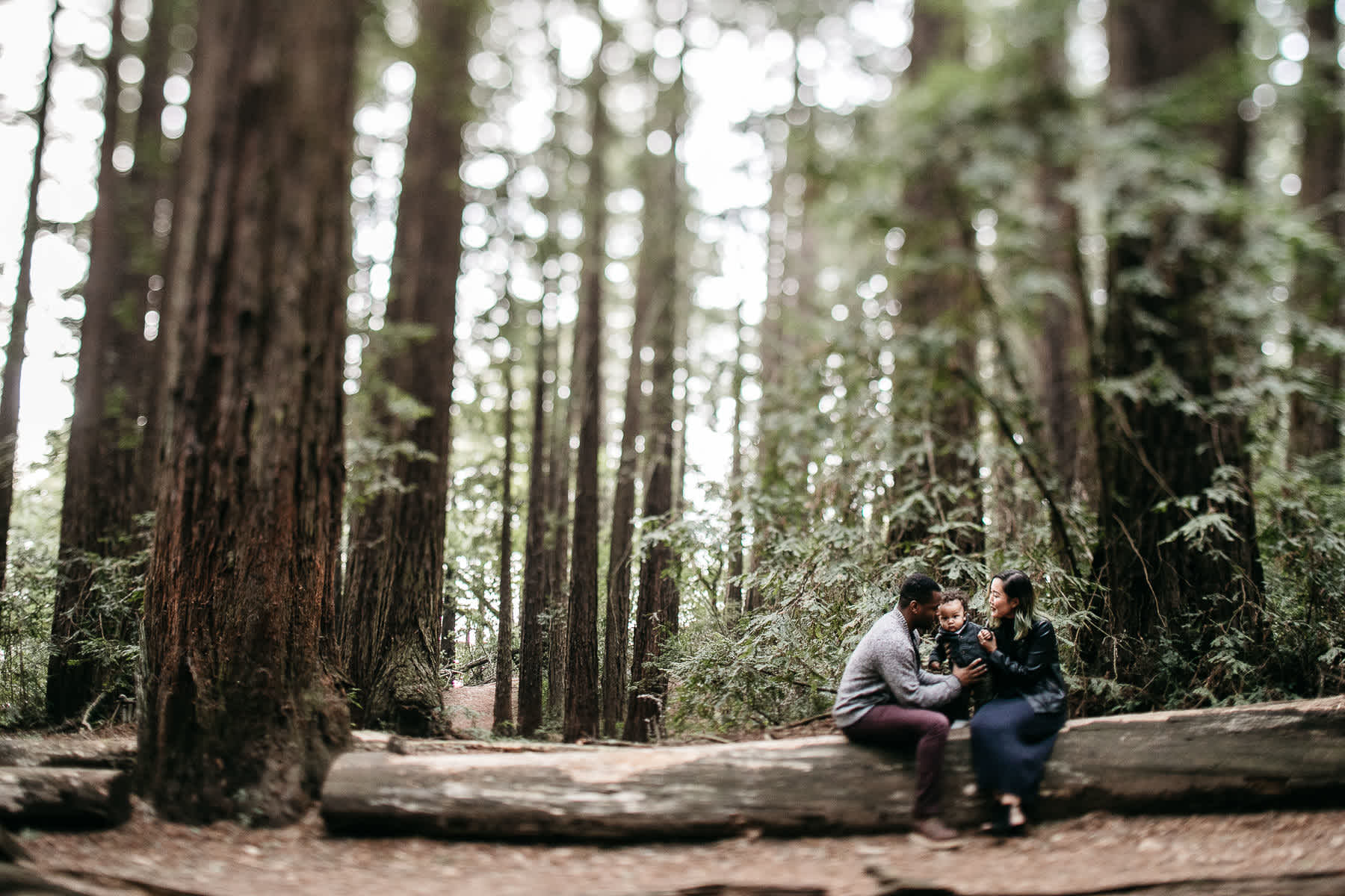 oakland-redwoods-urban-family-session-20