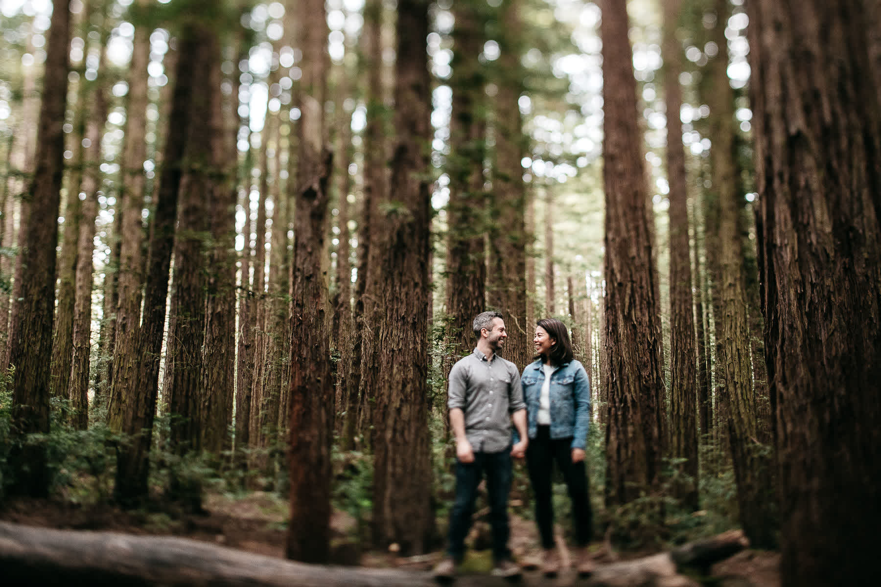 oakland-gloomy-redwood-engagement-session-with-puppy-14
