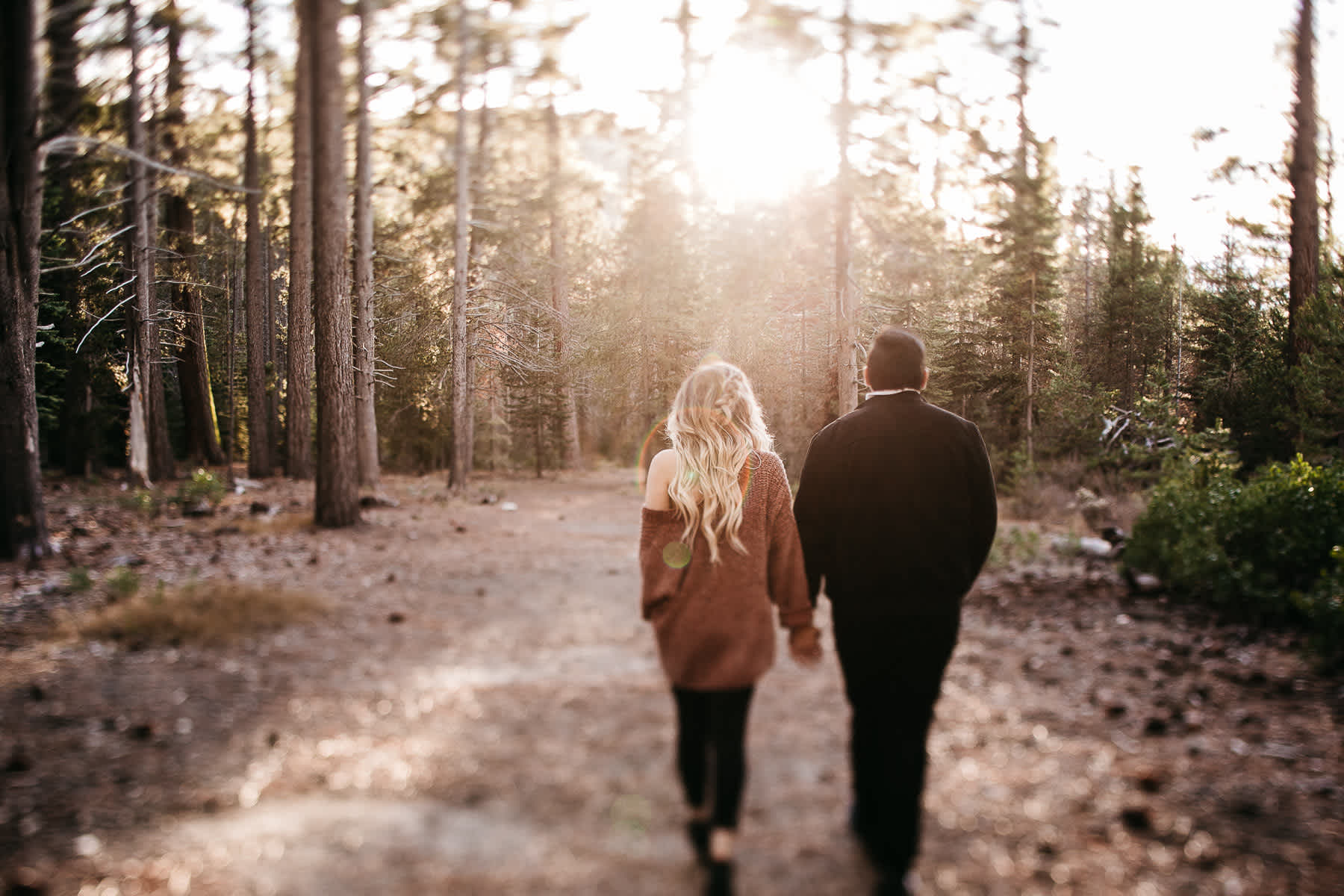 donner-lake-tahoe-national-forest-fall-engagement-session-4