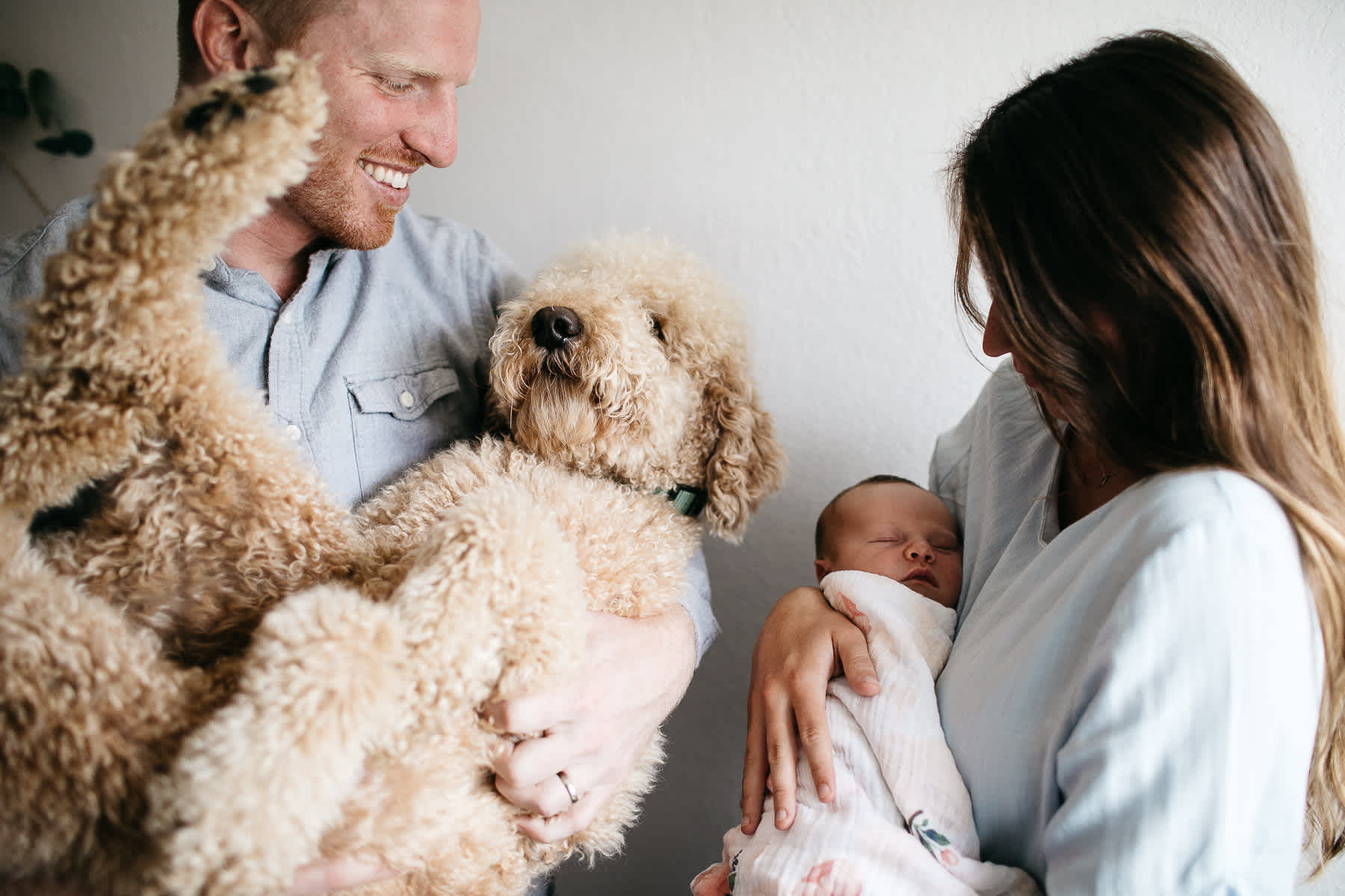 san-francisco-lifestyle-in-home-newborn-with-dog-54