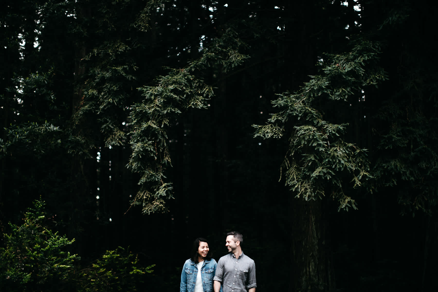oakland-gloomy-redwood-engagement-session-with-puppy-47