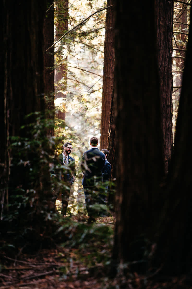 oakland-redwoods-summer-wedding-34