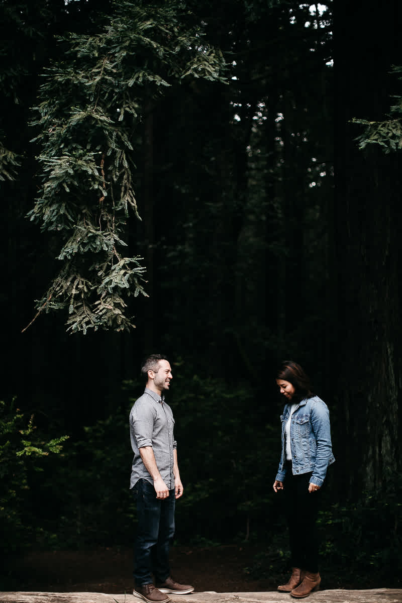 oakland-gloomy-redwood-engagement-session-with-puppy-37