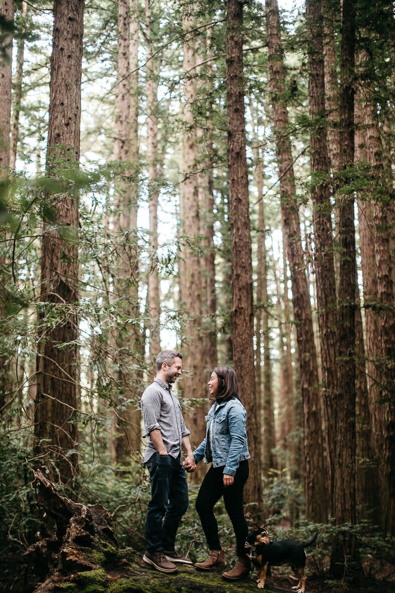 oakland-gloomy-redwood-engagement-session-with-puppy-11