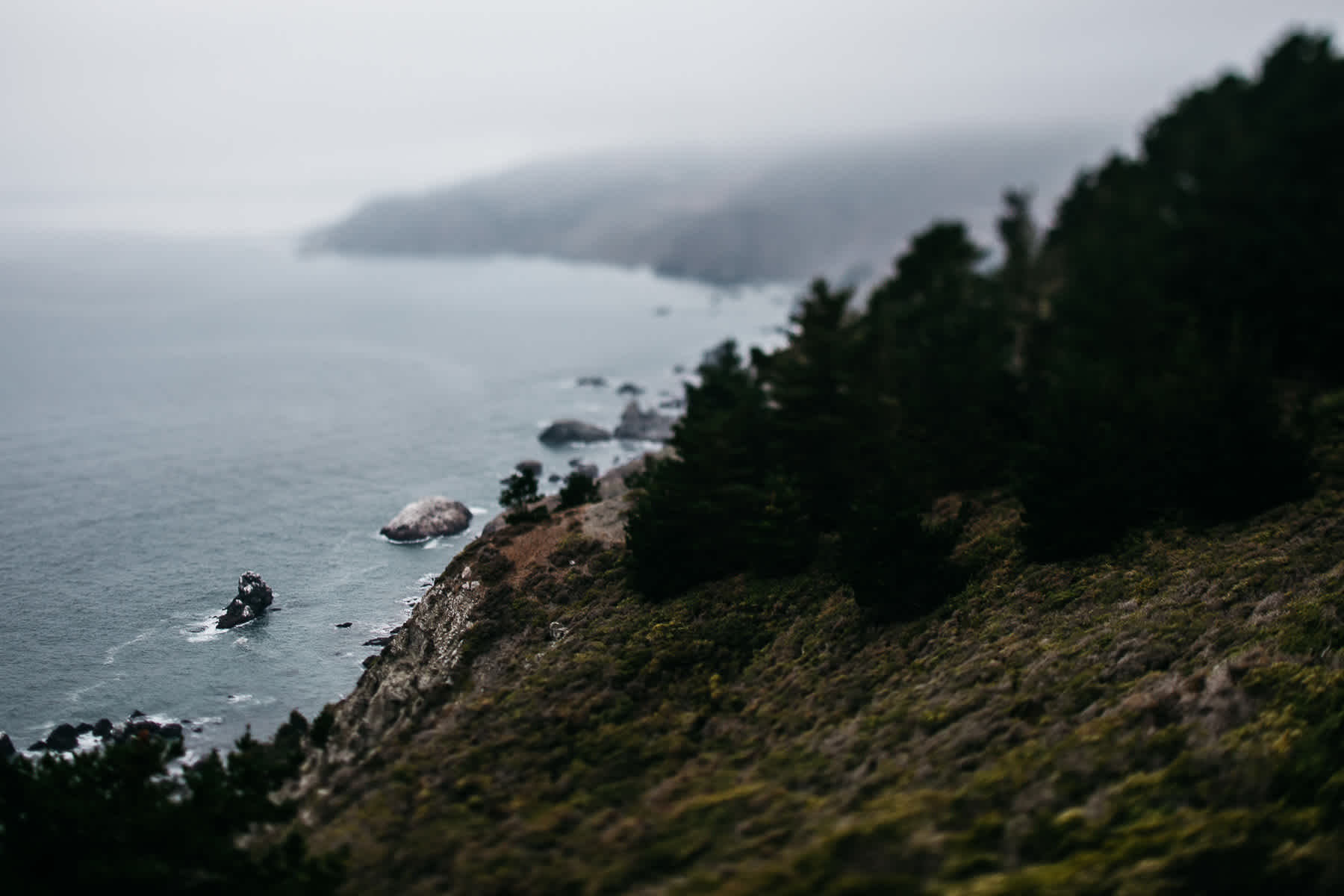 muir-beach-pelican-inn-foggy-wedding-99