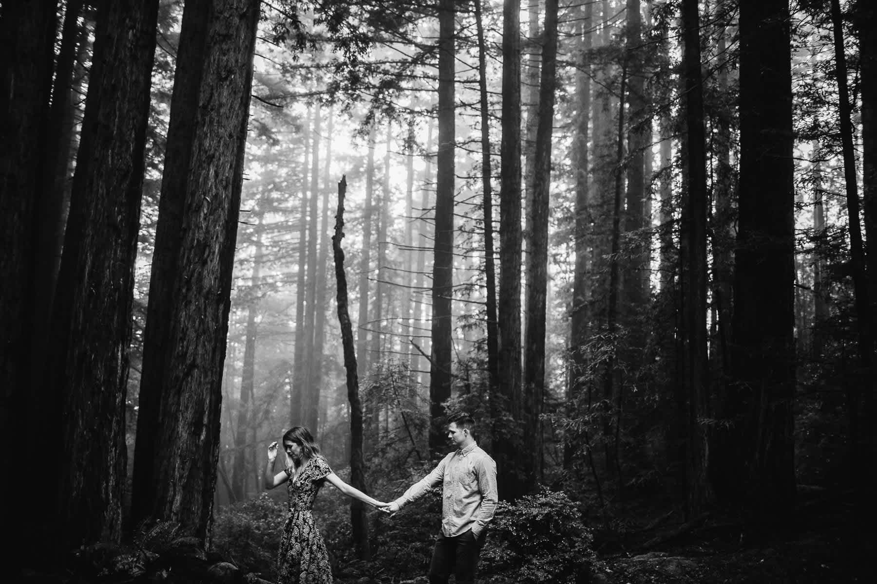 mt-tam-california-foggy-fall-engagement-hills-redwood-engagement-session-22