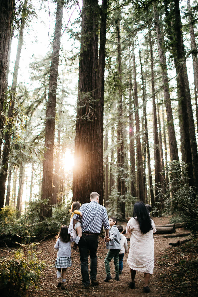 oakland-redwoods-dreamy-big-family-lifestyle-session-27