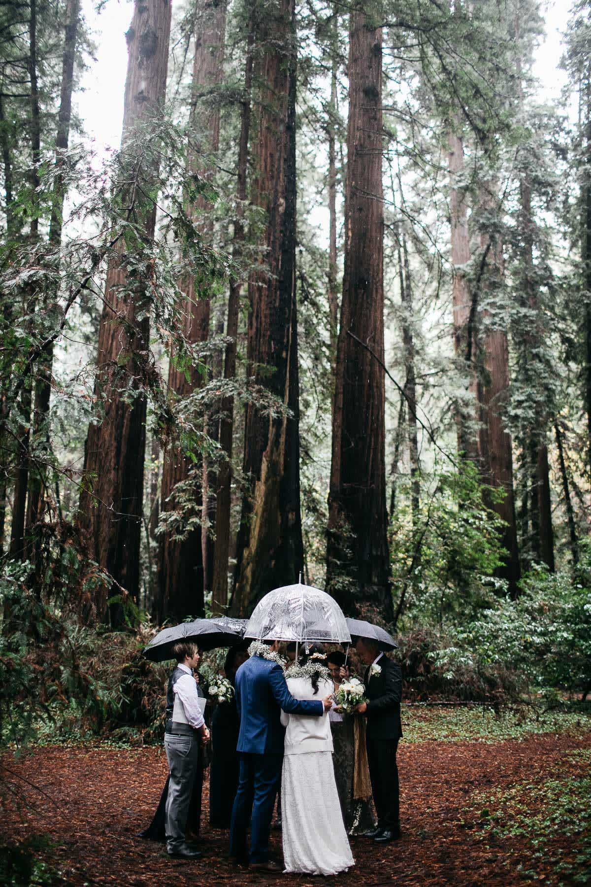 santa-cruz-redwoods-henry-cowell-rainy-elopement-photographer-23