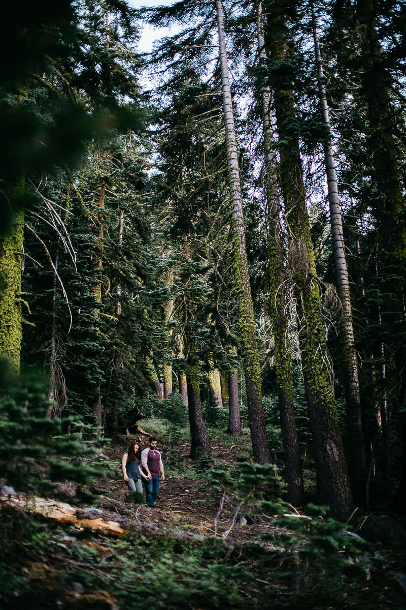 lake-tahoe-forest-donner-sunset-couple-session-9