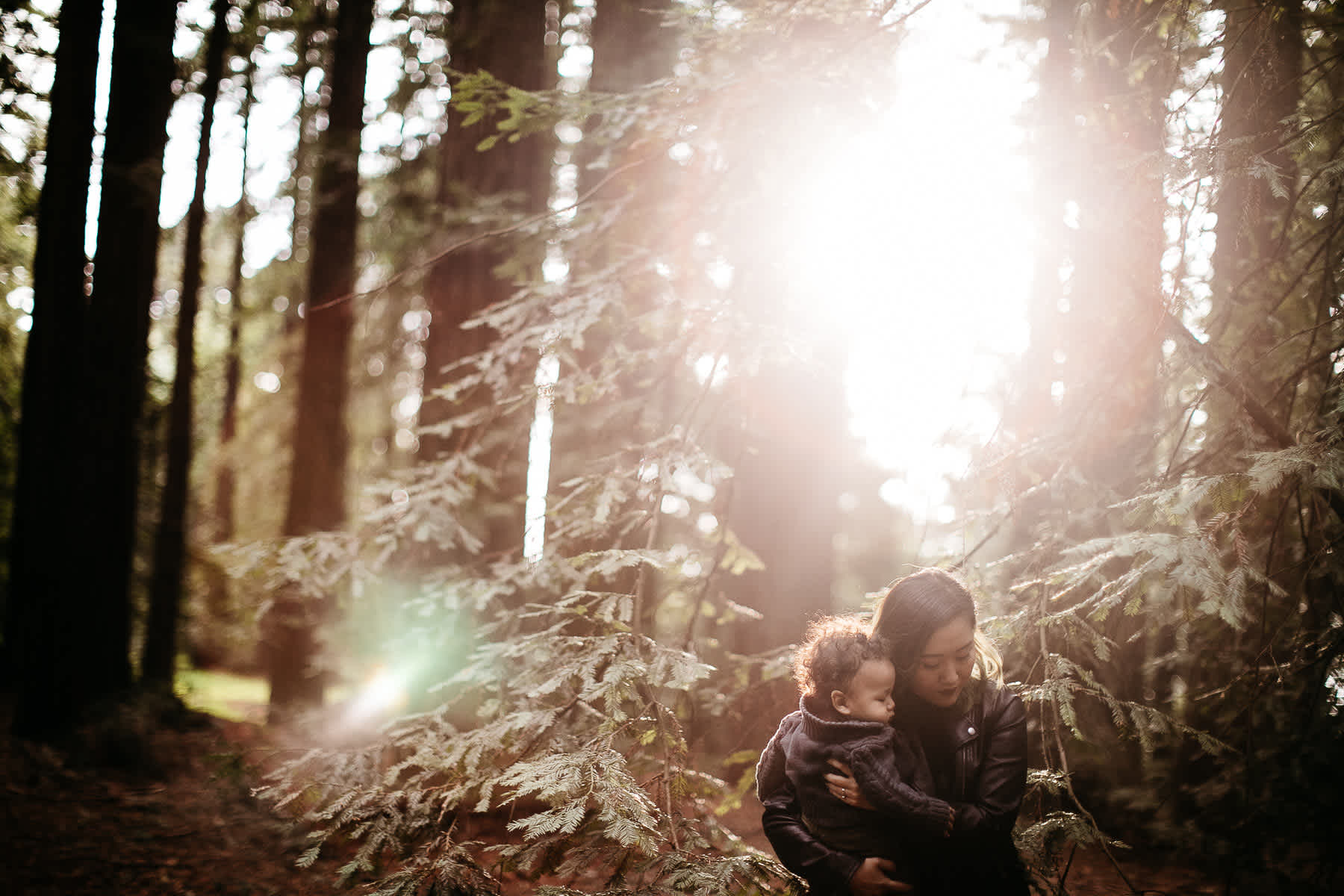 oakland-redwoods-urban-family-session-22