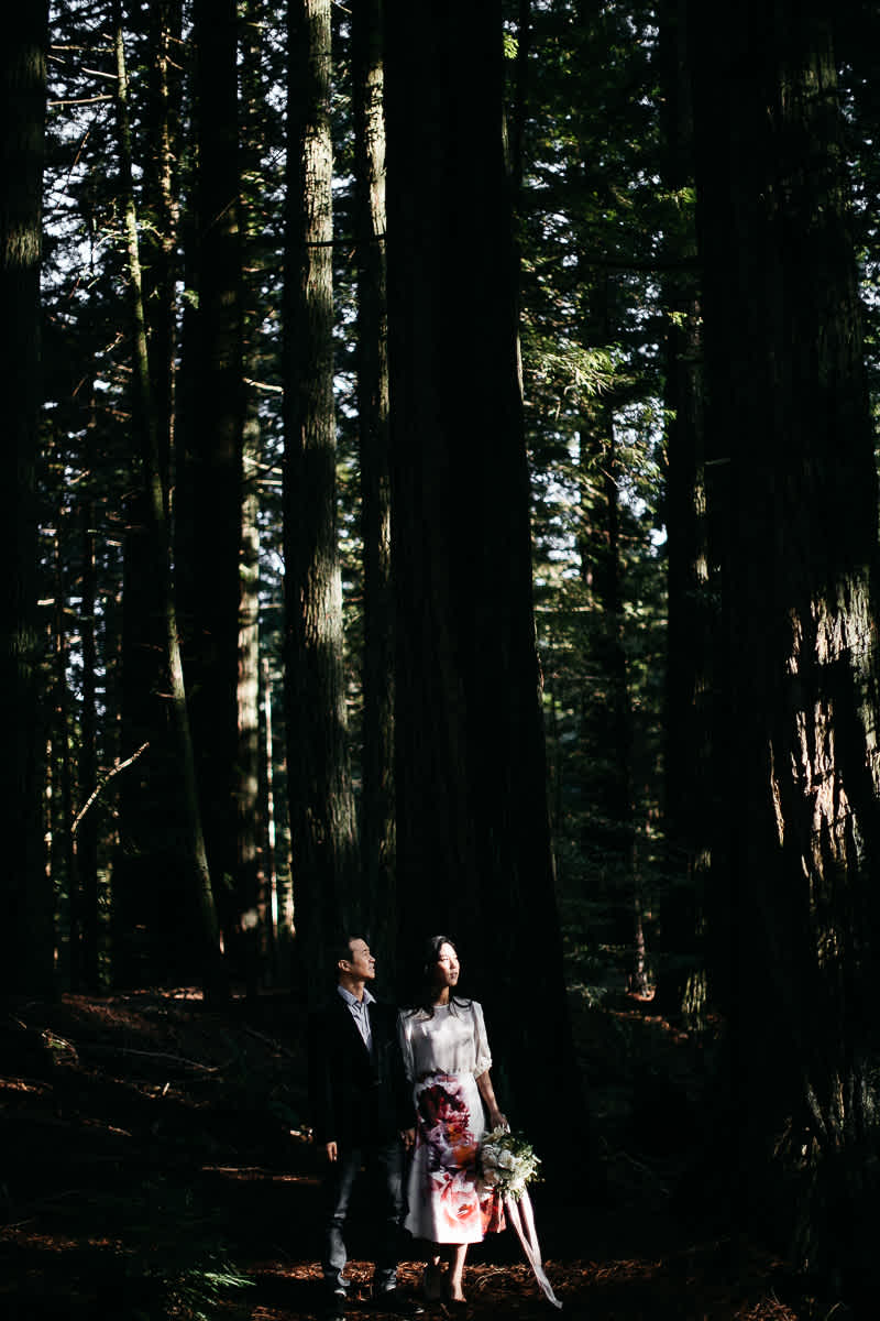 marin-headlands-redwood-golden-gate-bridge-engagement-session-10