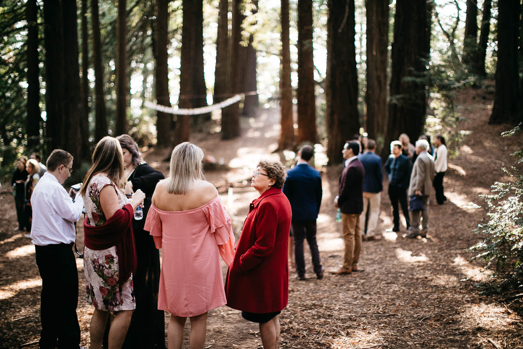 oakland-redwoods-summer-wedding-32