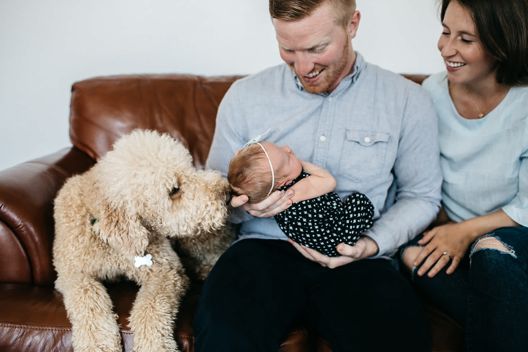 san-francisco-lifestyle-in-home-newborn-with-dog-4