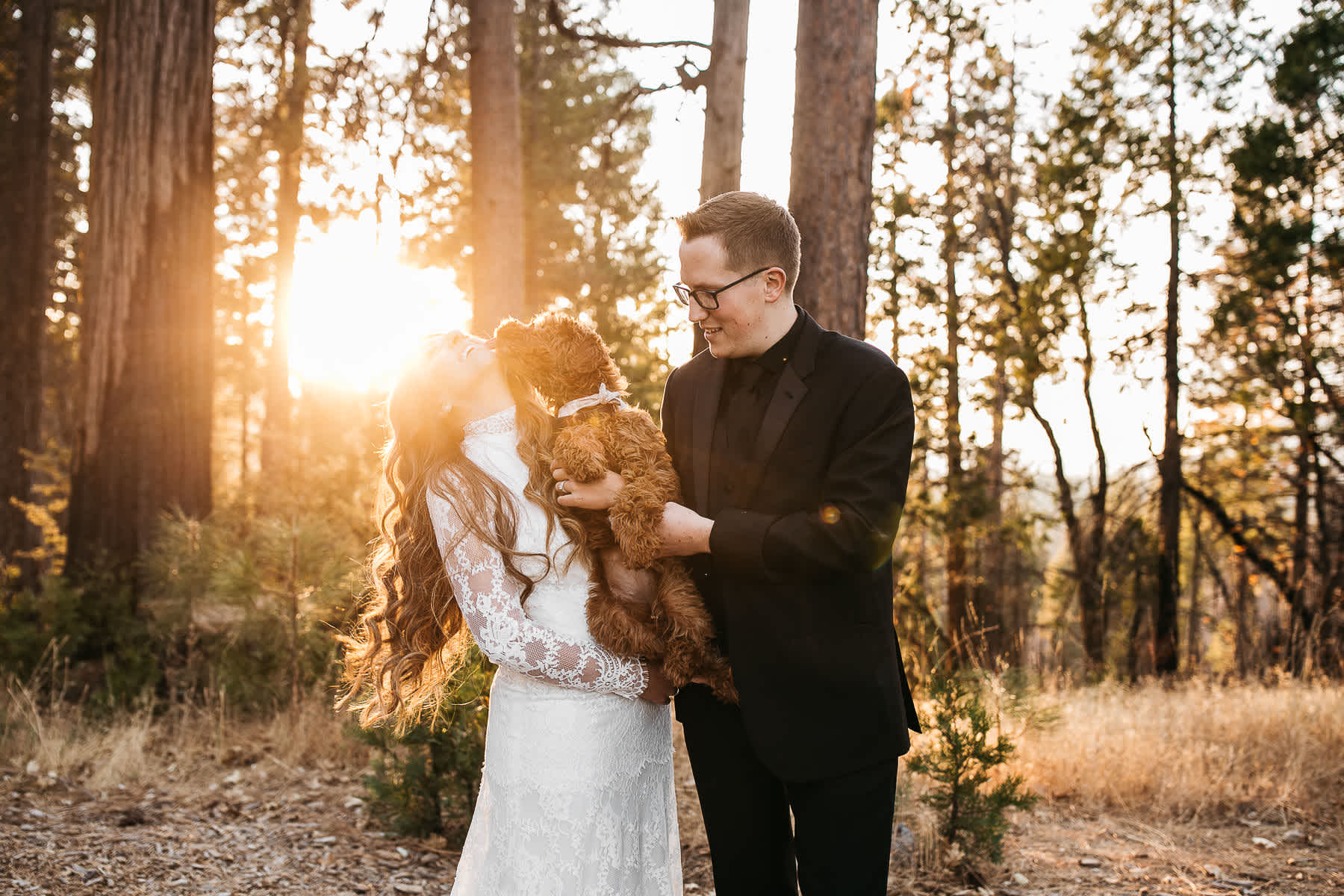 yosemite-rush-creek-fall-wedding-goldendoodle-77