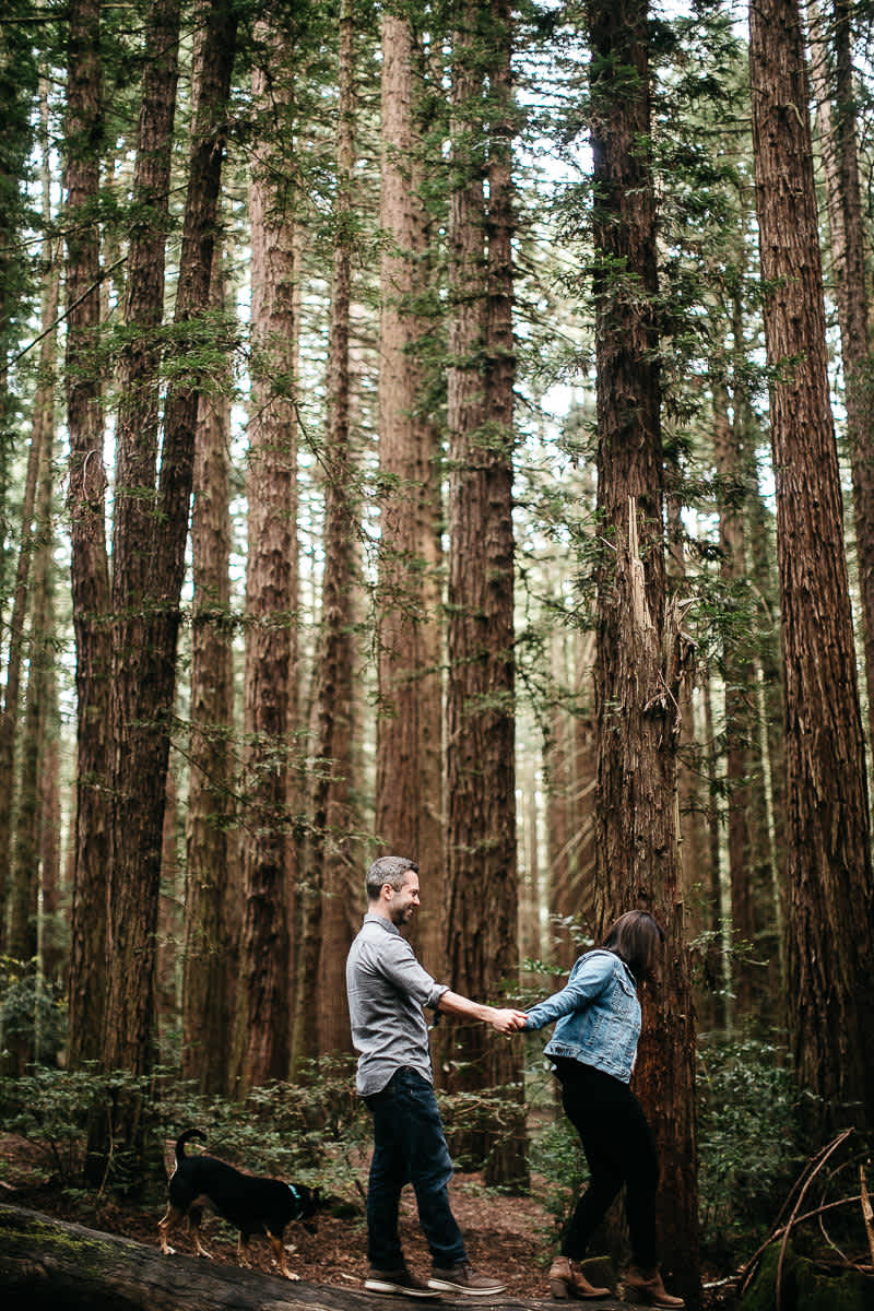oakland-gloomy-redwood-engagement-session-with-puppy-10