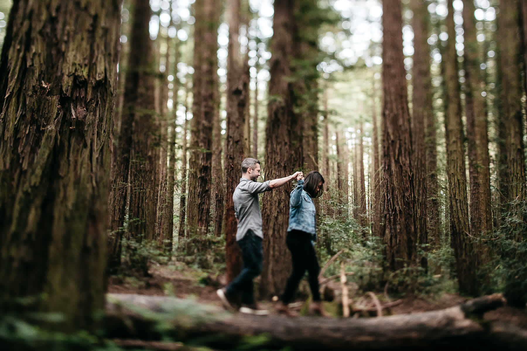 oakland-gloomy-redwood-engagement-session-with-puppy-12