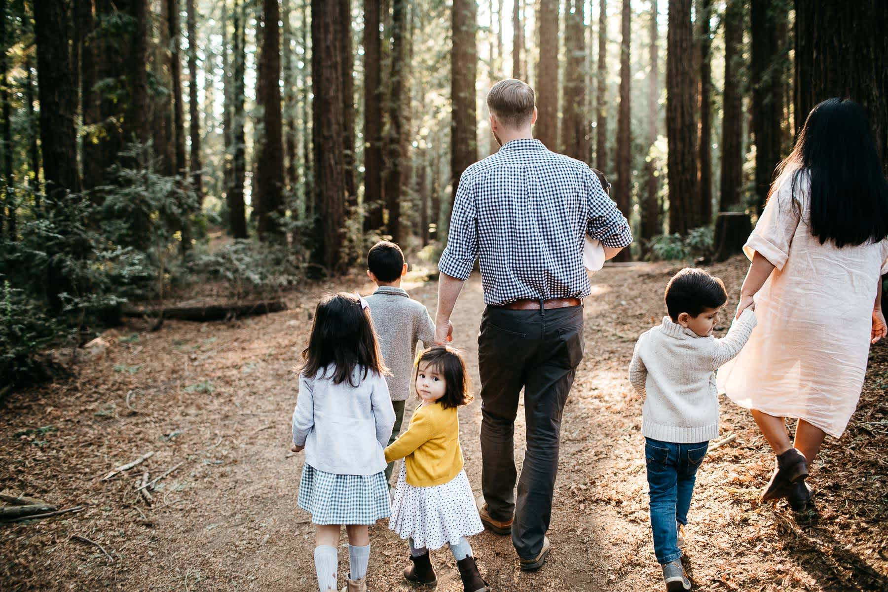 oakland-redwoods-dreamy-big-family-lifestyle-session-7