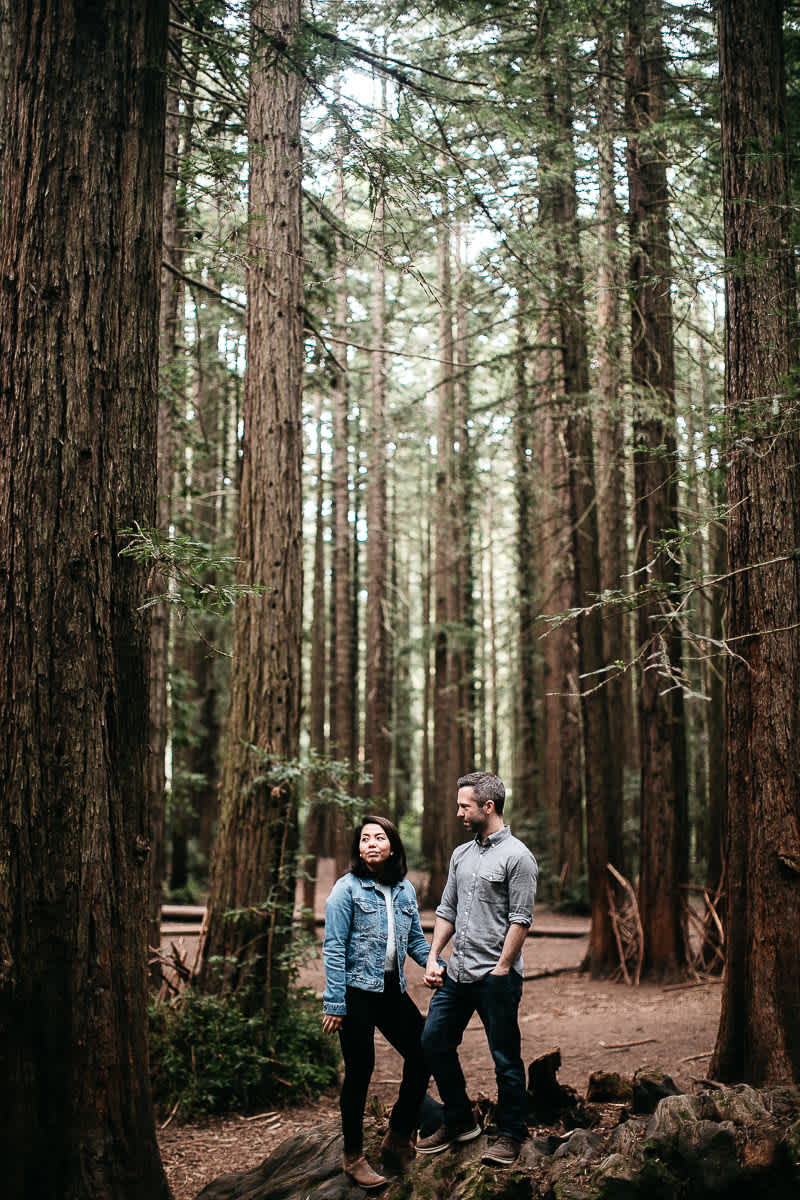 oakland-gloomy-redwood-engagement-session-with-puppy-15