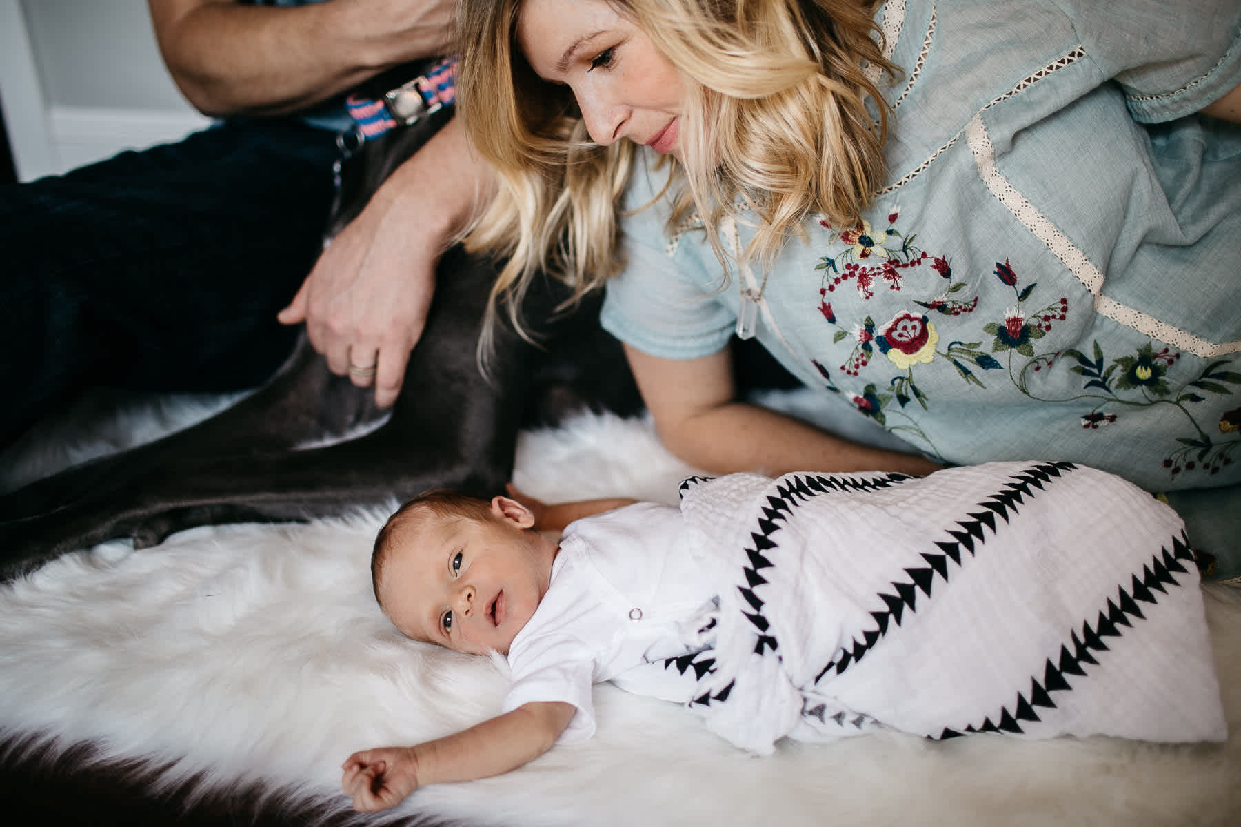 in-home-lifestyle-newborn-with-great-dane-dog-18