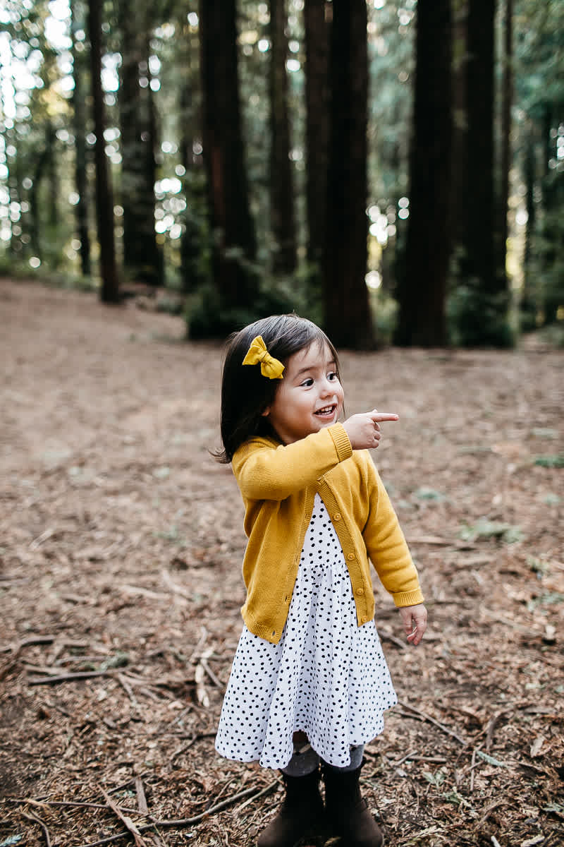 oakland-redwoods-dreamy-big-family-lifestyle-session-12