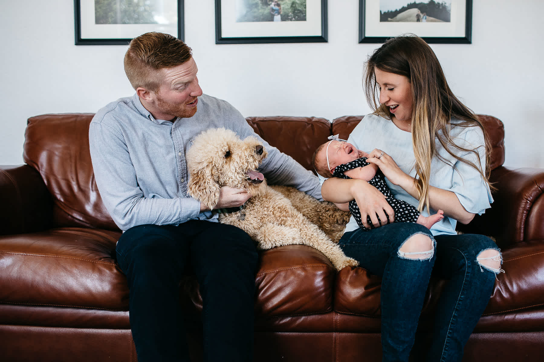 san-francisco-lifestyle-in-home-newborn-with-dog-2