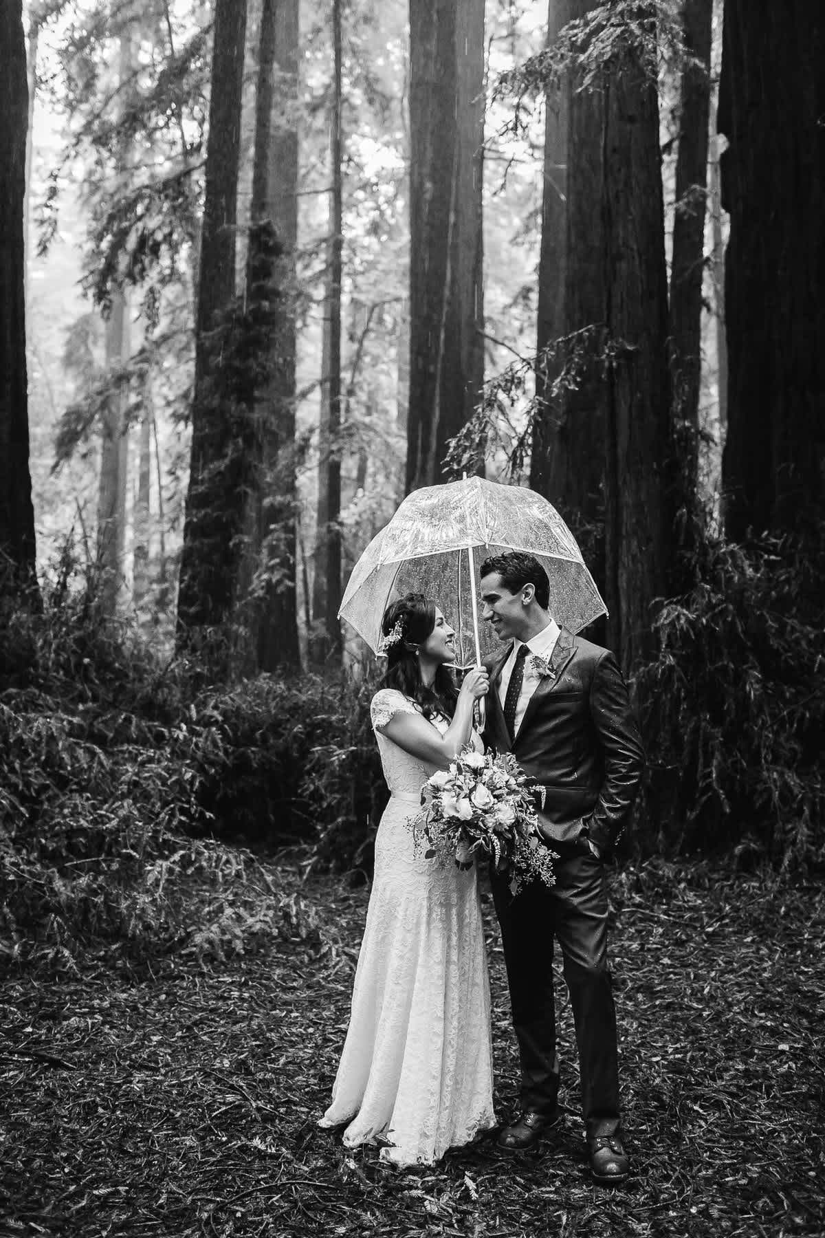 santa-cruz-redwoods-henry-cowell-rainy-elopement-photographer-42