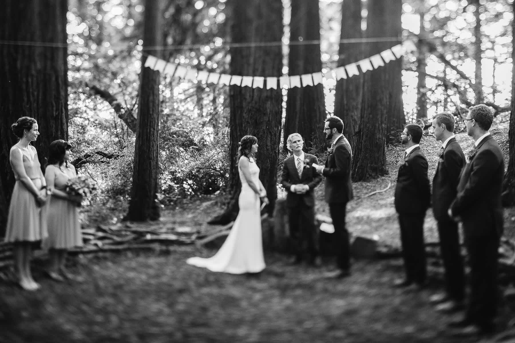 oakland-redwoods-summer-wedding-53