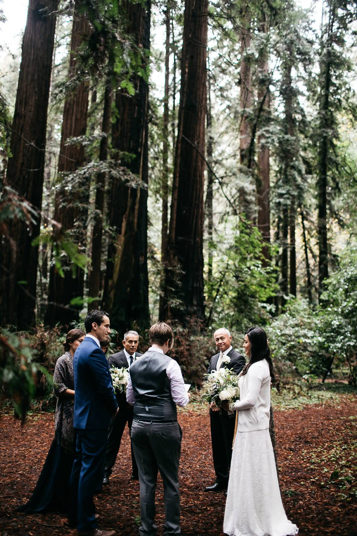 santa-cruz-redwoods-henry-cowell-rainy-elopement-photographer-5